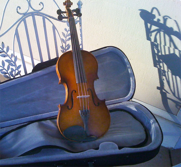 Painting A Violin