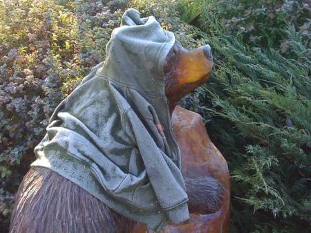 Bear sculpture, wood from tree trunk, Niwot, Colorado, frosty morning with child's lost jacket
