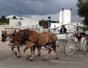 Belgian horses team pulling tourists in Estes Park as storm clouds threaten.