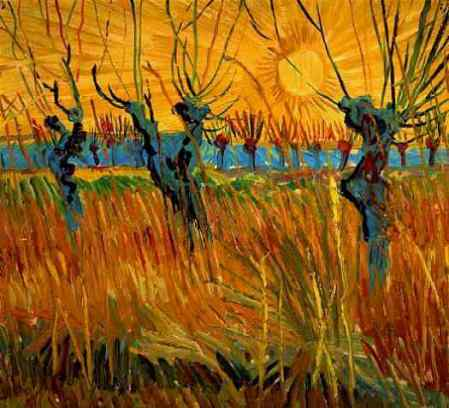 Willows at Sunset, Vincent Van Gogh